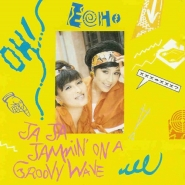 Echo - Ja Ja Jammin On A Groovy Wave
