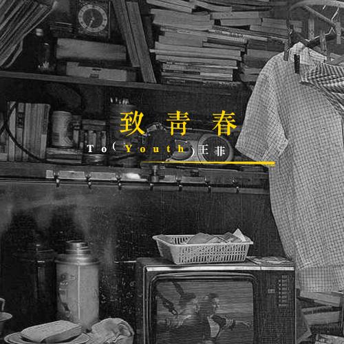 王菲-致青春_mp3bst.com